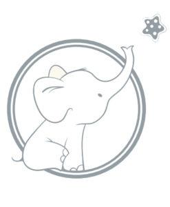 Colección Elephant